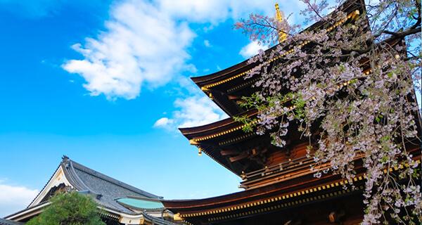 埼玉蕨の風景
